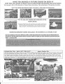 3 Night Bahamas Cruise - Shore Excursions - Page 4